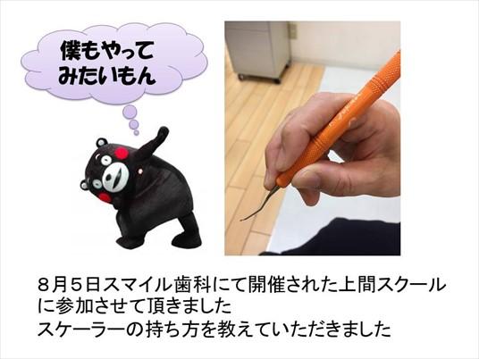 kagami81
