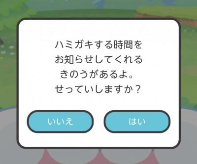 kagami404