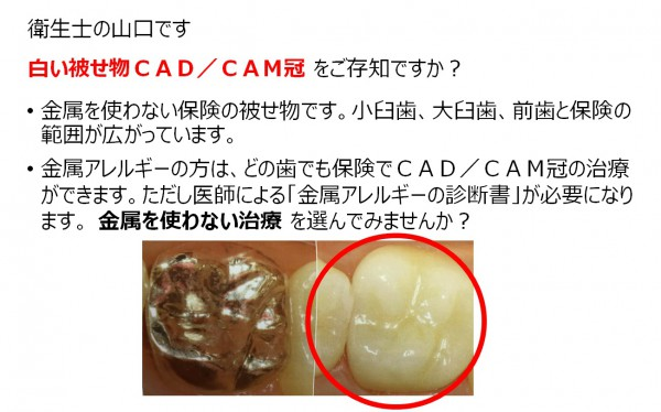 kagami462